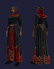 Flowing Black Robe Equipped