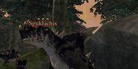 Spykrachis