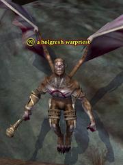 A holgresh warpriest