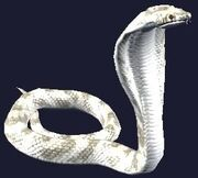Desert Cobra Plushie (Visible)