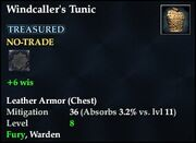 Windcaller's Tunic