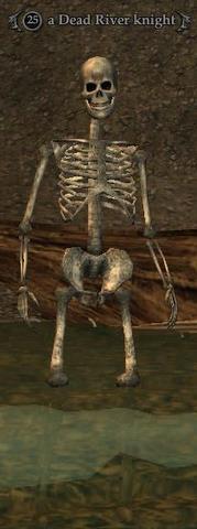 A Dead River knight