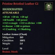 Pristine Bristled Leather Gi