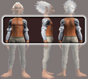 Sensei's Arm Wraps (Equipped)