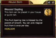 Blessed Sapling