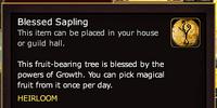 Blessed Sapling