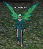 Eleoona Faleisinae