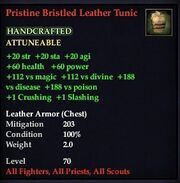 Pristine Bristled Leather Tunic