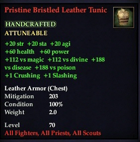 File:Pristine Bristled Leather Tunic.jpg