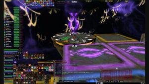 Paixao NE purple