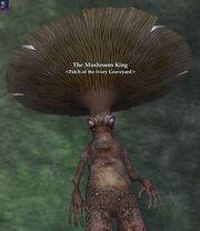 The Mushroom King