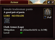 Female tradesman pants
