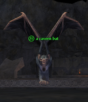 A cavern bat