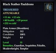 Black Feather Pauldrons