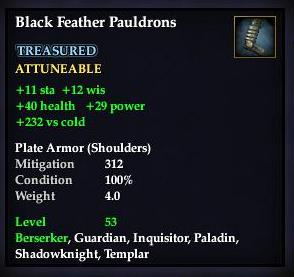 File:Black Feather Pauldrons.jpg