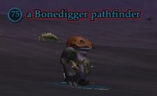 File:A Bonedigger pathfinder.jpg