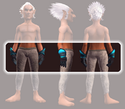 Frostwind Oracle's Gauntlets (Equipped)