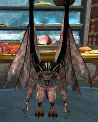 Undead Knight VI (Adept)
