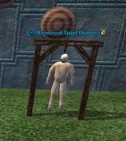 Reinforced Target Dummy