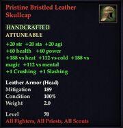 Pristine Bristled Leather Skullcap