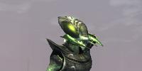 A Vornerus intruder