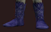 Marine Boots of the Far Seas Traders (Equipped)