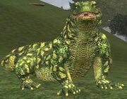 Race lizard