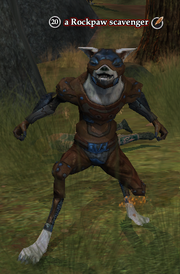 A Rockpaw scavenger