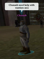 Thumbnail for version as of 19:11, October 31, 2007