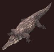 Languid Crocodile Plushie (Visible)