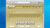 VIP web.PNG