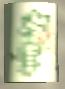 Lata sprunk light