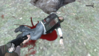 Jason muerto