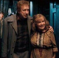 Arthur y Molly Weasley en 1995.jpg