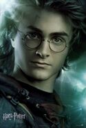 Goblet of fire poster (4)