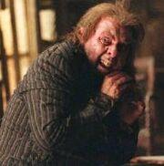 Peter Pettigrew.jpg
