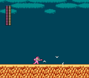 Archivo:185px-MM2-QuickBoomerang-SS.png