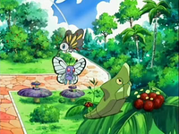 Archivo:EP533 Pokémon del vivero.png