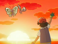 Archivo:EP568 Ash recordando a Butterfree.png