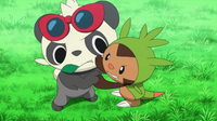 EP854 Pancham y Chespin