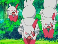 Archivo:EP522 Zangoose.png