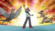 EP730 Ash junto a sus Pokémon festejando la victoria del Gimnasio Loza