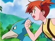 EP093 Misty y Golduck