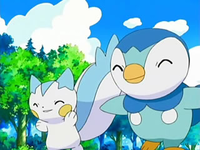 Archivo:EP510 Piplup y Pachirisu.png
