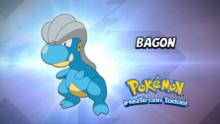 EP877 Cuál es este Pokémon.png