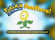 EP187 Pokémon.png