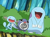 Archivo:EP429 Wooper, Poliwag y Quagsire.png