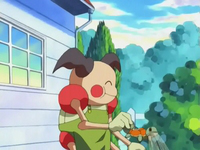 EP274 Regadera Squirtle.png
