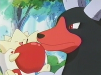 Archivo:EP182 Togepi con Houndoom (3).png