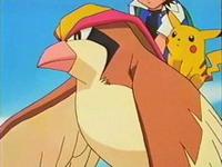 Archivo:EP083 Ash y Pikachu montados en Pidgeot.png